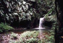 Braulio Carillo Water Falls
